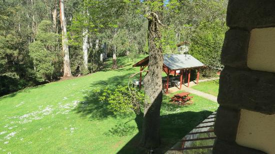 Black Spur Inn: Everything nice and green