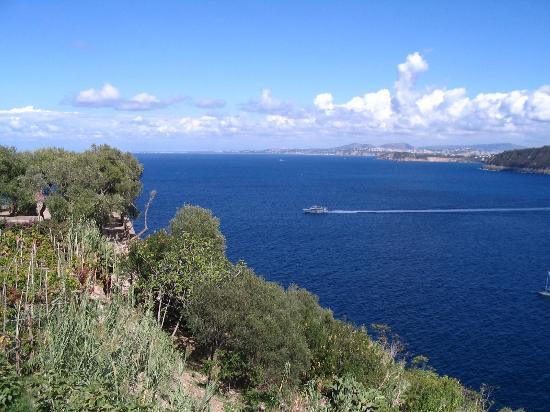 Hotel Parco Cartaromana : Vue du Château Aragon sur la baie de Naples