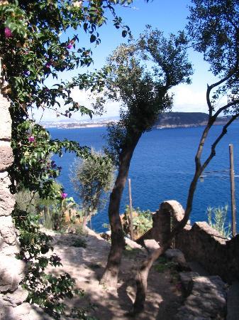 Hotel Parco Cartaromana : Vue du château sur l'ile de Procidia