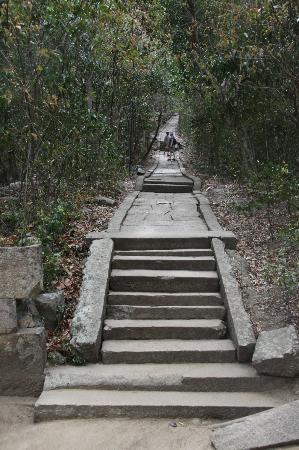 Ritigala Forest Monastery : Steps