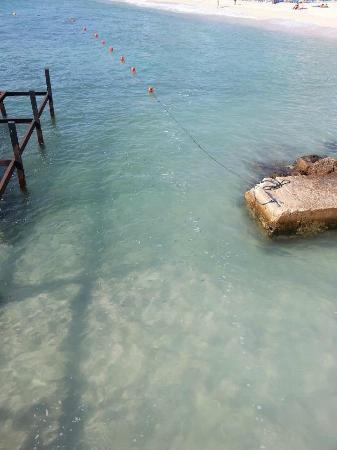 Universal Hotel Florida: sea