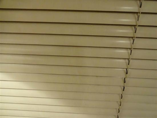 Kinston Manor By Evrentals: FILTHY BLINDS