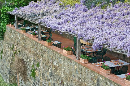 Panzano in Chianti, Italien: il giardino
