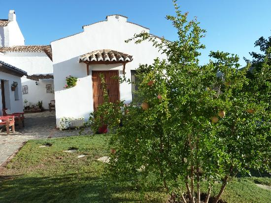 Cortijo de Las Piletas: Our room