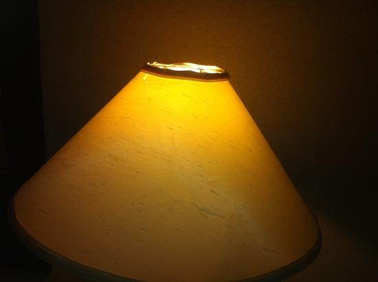 Ramada Plaza Calgary Downtown: beat off lamp shades