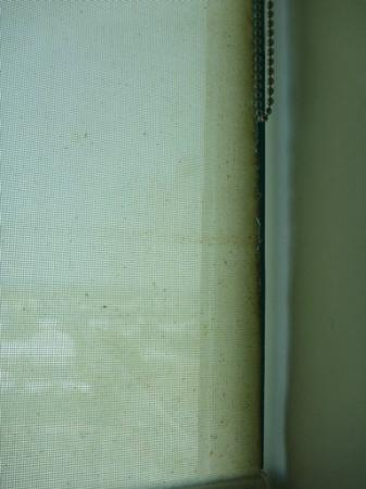 Mantra Crown Towers: Dirty and mouldy kitchen blinds
