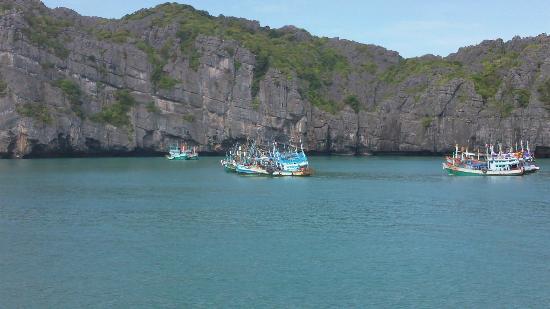 Blue Stars Kayaking : Random fishing boats