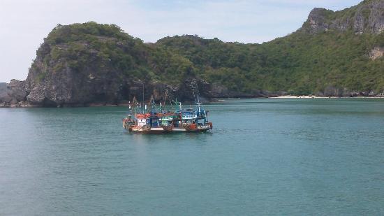 Blue Stars Kayaking : More boats