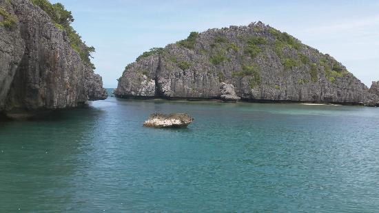 Blue Stars Kayaking : Beautiful!