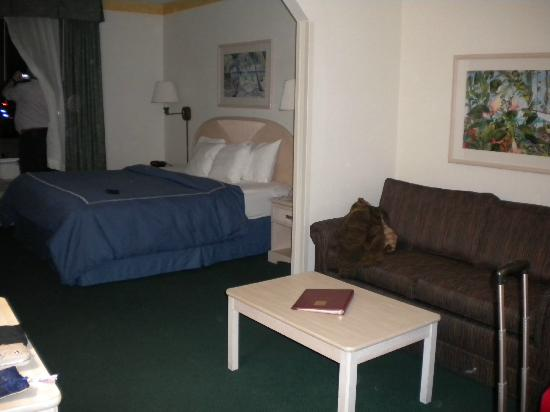 Comfort Suites Maingate East: Room Interior