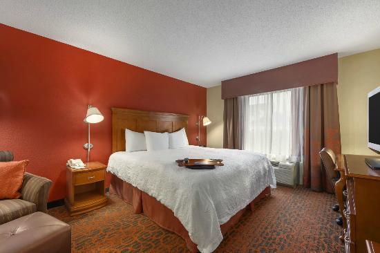 Hampton Inn Merrillville: Guestroom