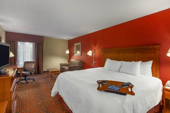 Hampton Inn Merrillville: Suite