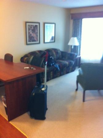 GrandStay Residential Suites Hotel Eau Claire : the living area