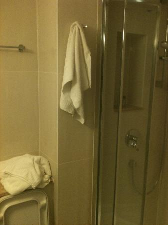 Park International Hotel: Bathroom