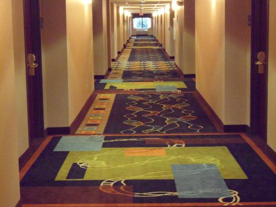 Holiday Inn Express Hotel & Suites Wadsworth: Hallway outside room 326