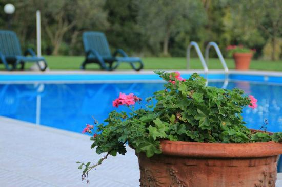 La Rossola: The beautiful pool