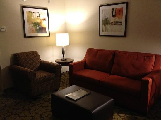 Hilton Garden Inn Olathe: King Suite