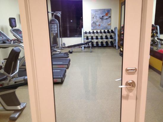 Hilton Garden Inn Olathe: Gym