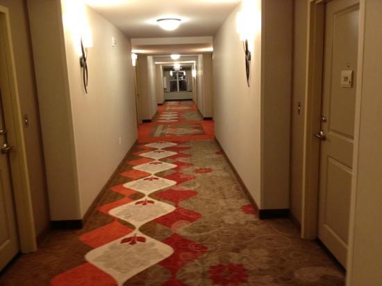 Hilton Garden Inn Olathe: Hallway