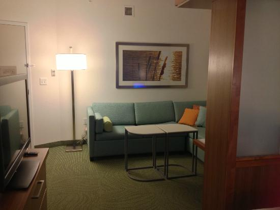 SpringHill Suites Chattanooga Downtown/Cameron Harbor: Our Room/Suite