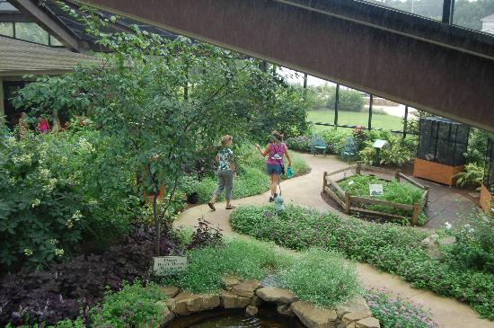Butterfly House Picture Of Huntsville Botanical Garden Huntsville Tripadvisor