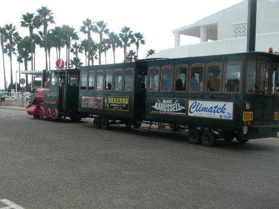 Protur Palmeras Playa: Road Train in Sa Coma
