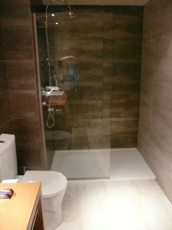 Protur Palmeras Playa Aparthotel : Walk in Shower