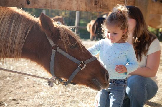 Santa Claus, IN: Horseback riding at Santa's Stables