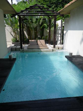 Amara Sanctuary Resort Sentosa: plunge pool in the villa