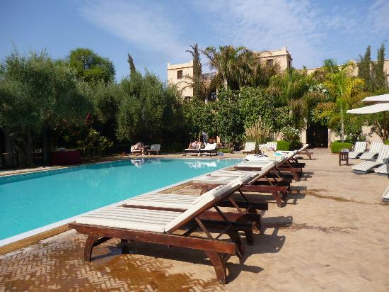 The country club swimming pool picture of la maison for La maison club