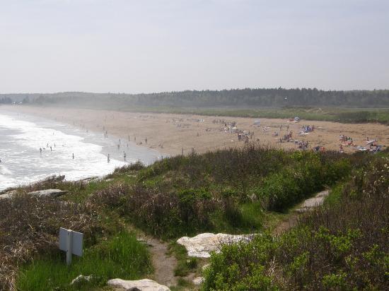 Reid State Park : Sandy beach area