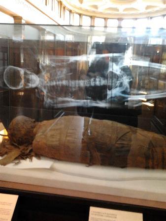 Musee Redpath: redpath mummy
