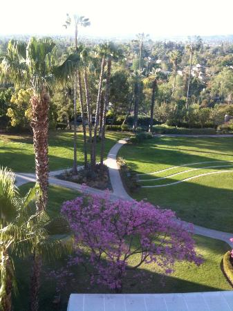 The Langham Huntington, Pasadena, Los Angeles: Great views from many rooms