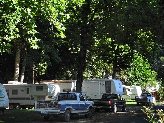Big Foot RV Park & Cabins
