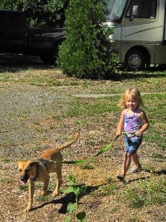 Big Foot RV Park & Cabins: Pet Friendly