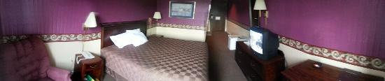 Americourt Hotel: Standard King