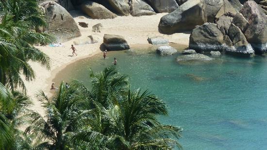 Ban Sua Samui: Coral Cove