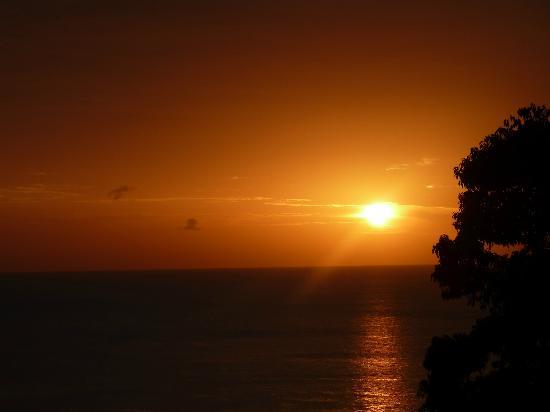 Ban Sua Samui: Sonnenaugang
