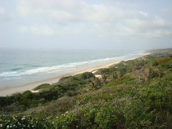 Massinga Beach Lodge: Room with a view