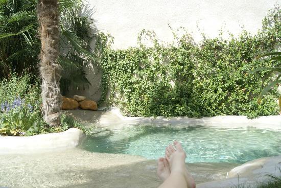 Le Patio des Senteurs: Jardim com a piscina