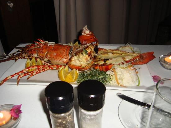Massinga Beach Lodge: Lobster