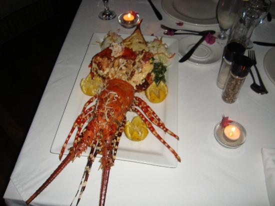 Massinga Beach Lodge: Lobster