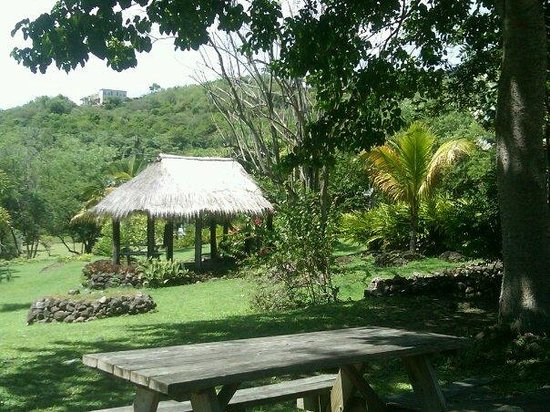 Nevis: Traditional village setting...