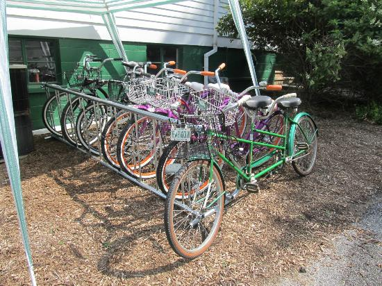 Anne's Washington Inn: Bicycles for guests