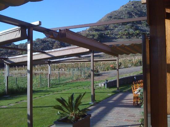 Hotel Rural El Mondalon: vue sur les vignes