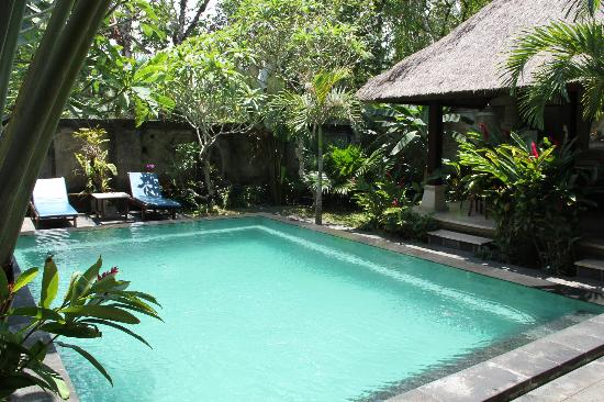 Alas Petulu Cottages: La piscine de la Pool Villa