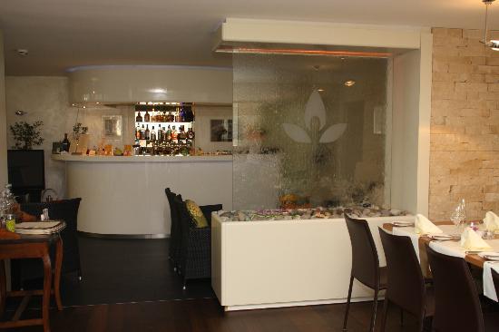 Galerie-Hotel Bad Reichenhall: Particolare cascata d'acqua nel ristorante