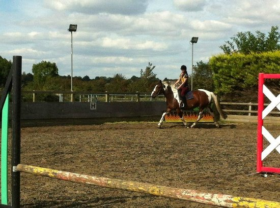 Crofton Manor Equestrian Centre