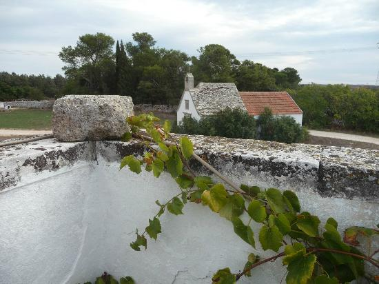Masseria Murgia Albanese : from the roof