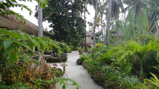 Ocean Vida Beach & Dive Resort: The path to the room, just a few steps away from the beach
